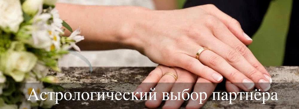 Выбор партнера.jpg